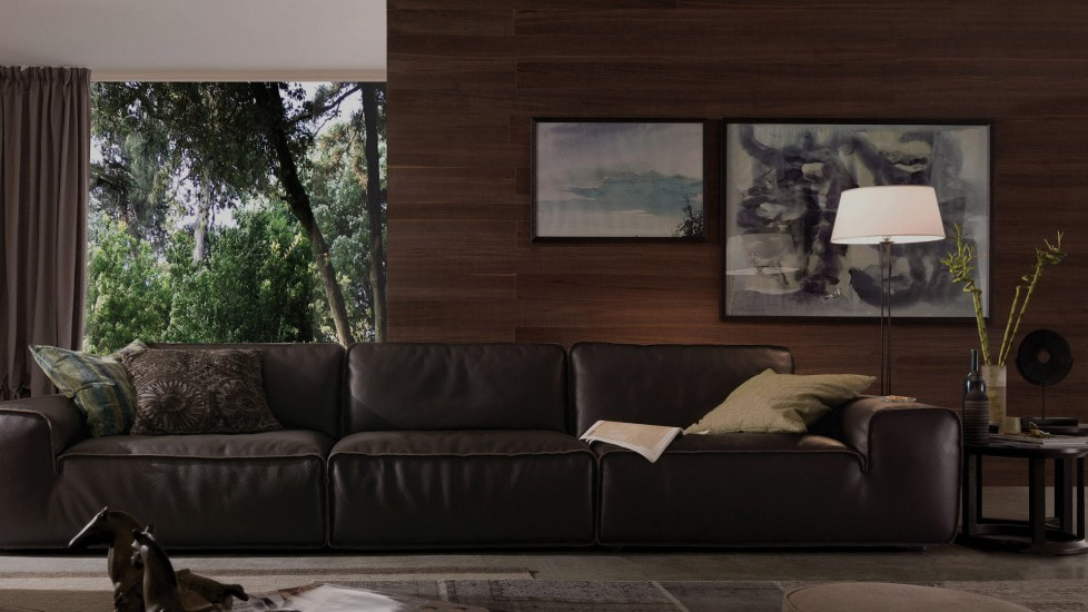 Modern Living Room with Dark Sofa and Floor Lamp
